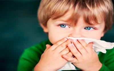 No hablemos de alergia sólo en Primavera